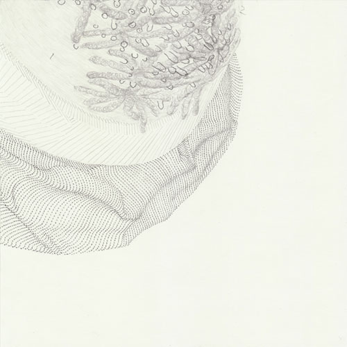 The Body of Drawing | Oliver Thie